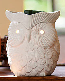 Have you tried Scentsy? It is the safe alternative to candles and recommended by my Firefighter Husband!