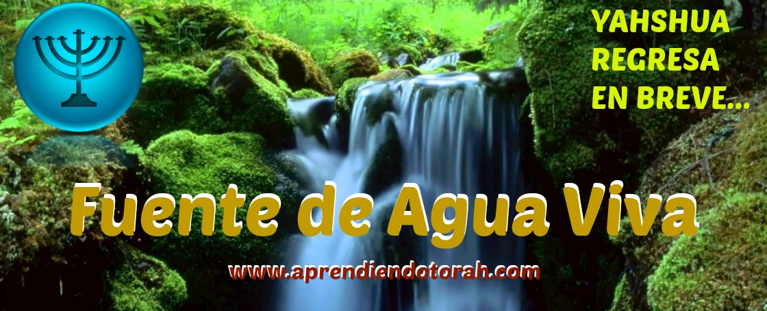 Fuente de Agua Viva