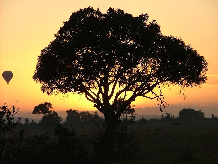 Dawn Masai Mara