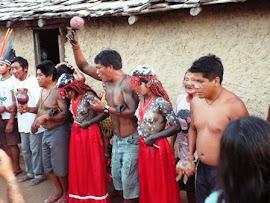 Direitos Indigenas Eu Apoio.