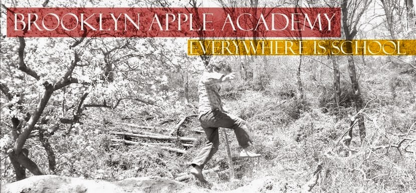 Brooklyn Apple Academy