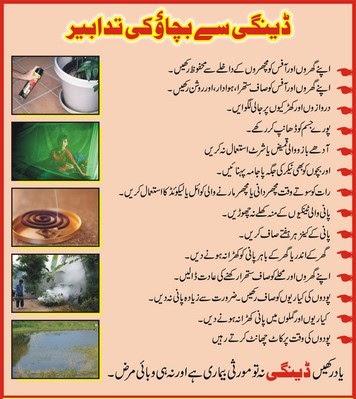 an essay on dengue in urdu