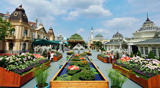 4H3M Seoul Tour + Everland Theme Park - Pilihan Hotel & Paket Tour di Seoul, Korea Selatan