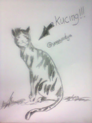 Kucing by @yoggysatya