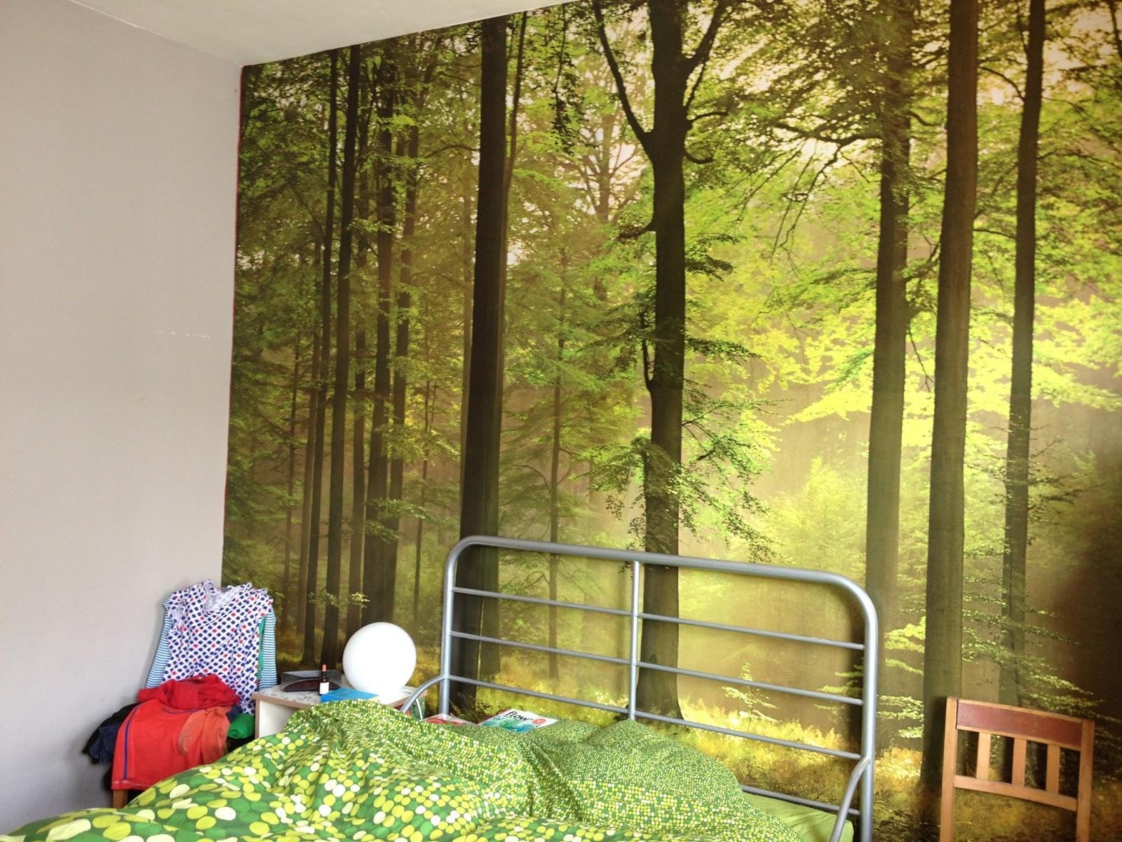 Voila, je hebt dus geen groene vingers nodig om de natuur in huis te ...