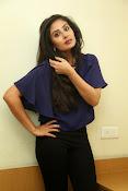 Bhanu sri mehra sizzling photos-thumbnail-6