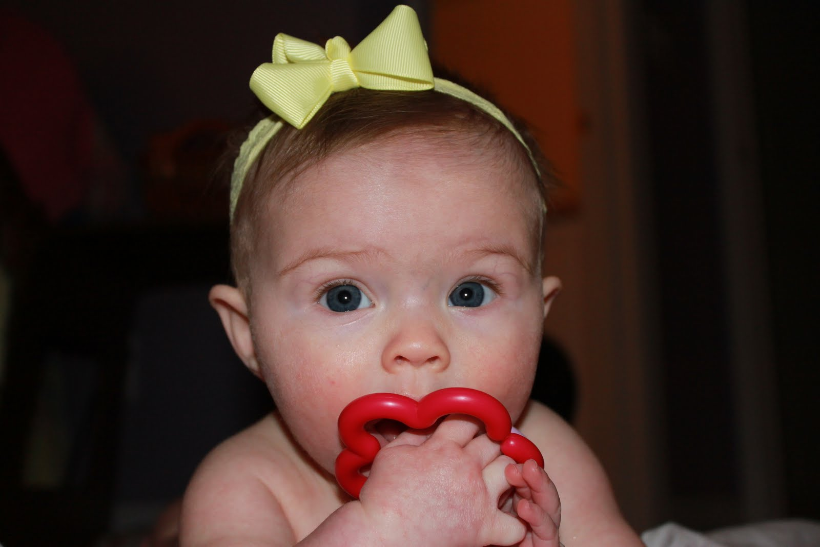 fertility increase sperm count