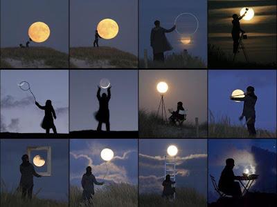 moon diet 2012