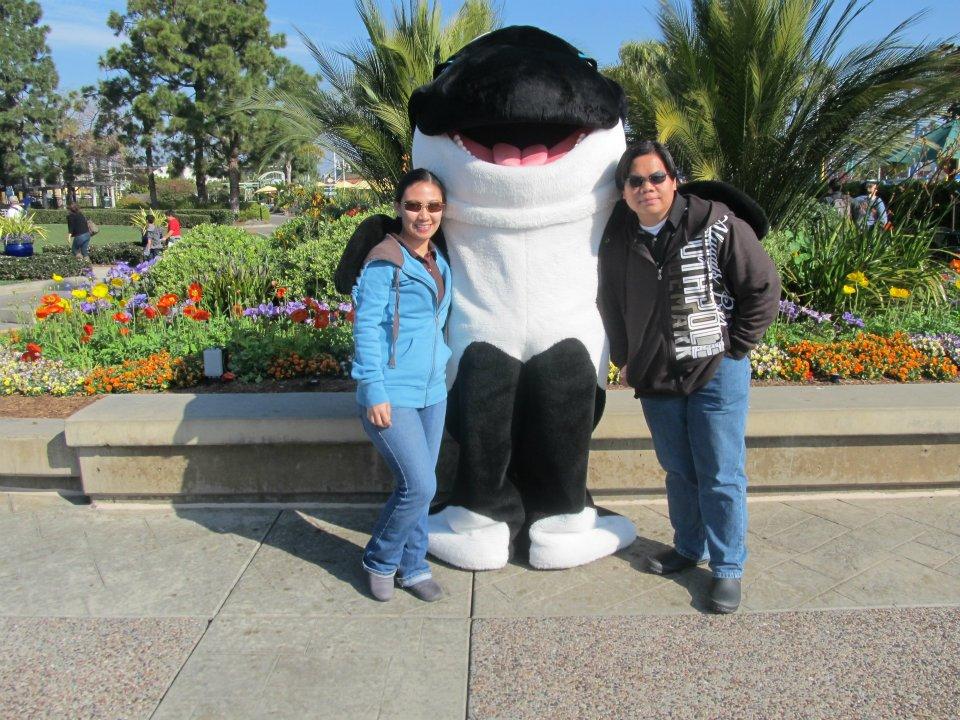 SeaWorld San Diego Shamu