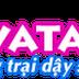Avatar 240 HD - Tải avatar HD 240 mới nhất