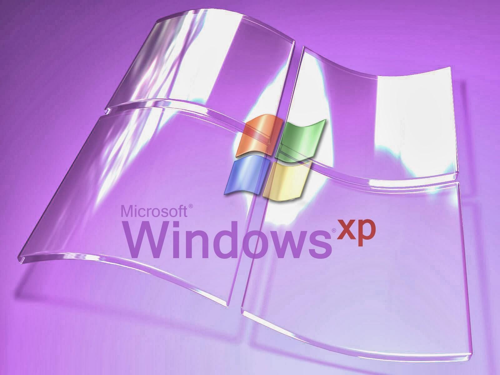 windows xp essay