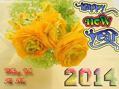 Happy New Year 2014 Wallpapers and Images of New Year