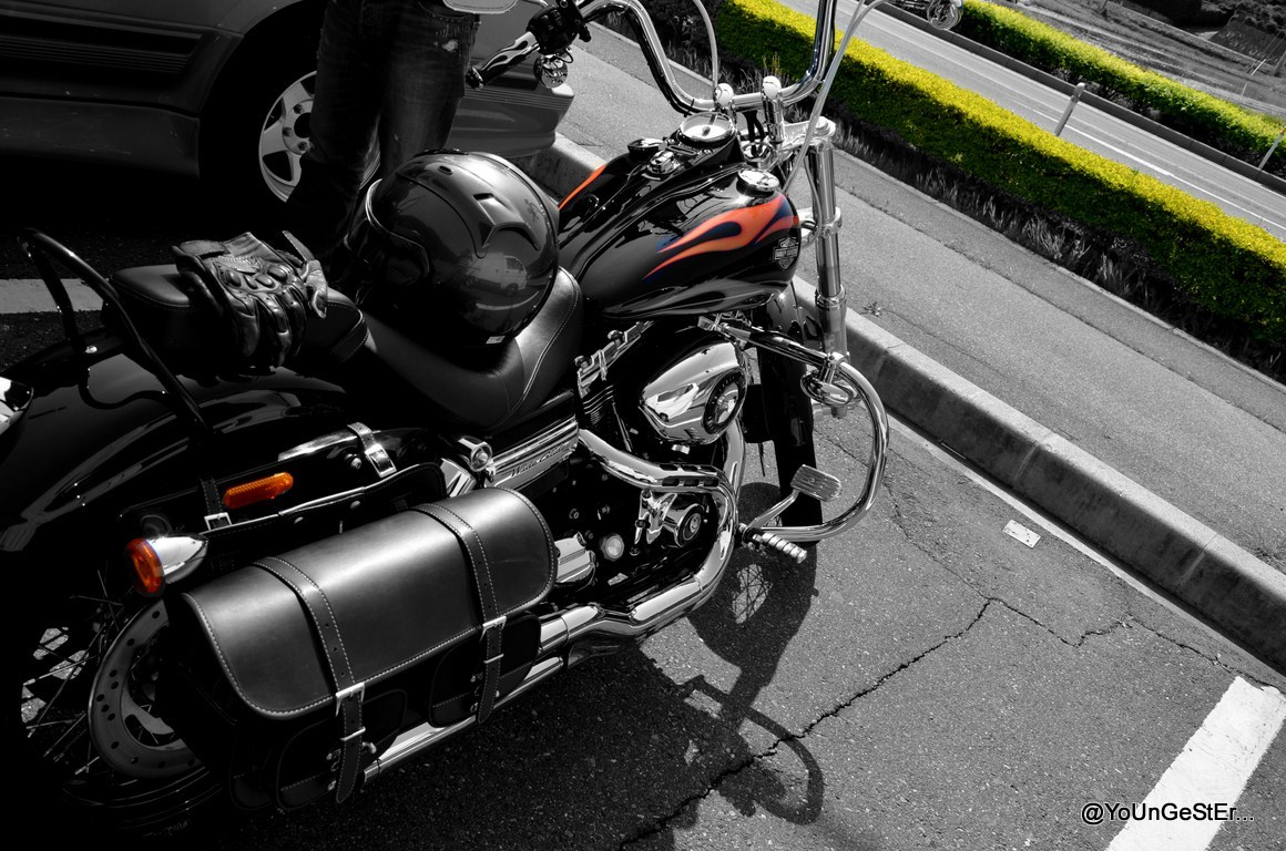 harley davidson 7 essay Harley-davidson wheels into india summary harley-davidson has continued it s global expanse and they ve set their sights on india though they face.