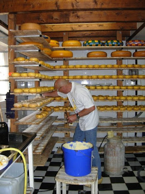 Cheese Maker in Edam, Netherlands