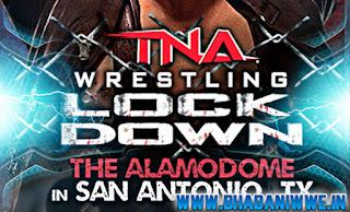 News » TNA Lockdown 2013 Final Match Card