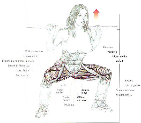 Como perder o peso em carboidratos excessivos