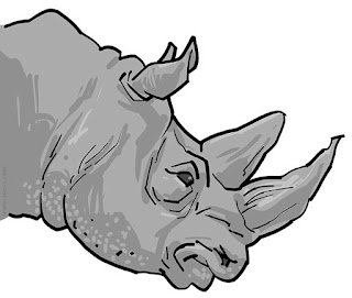 rhino head illustration