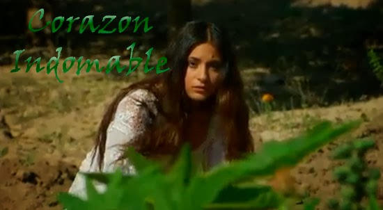 Corazn Indomable Captulo 5 Youtube/page/page/page/2