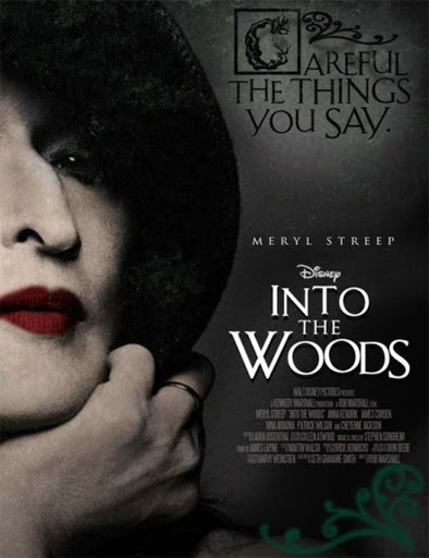 into the woods online subtitulada 720p