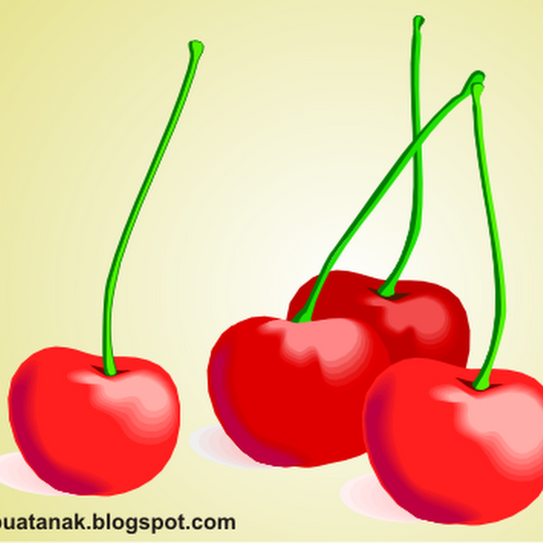 gambar jasa pembuatan dummy replika buah buahan cakkarmi