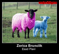 Smesne slike, Zorica Brunclik, i Esad Plavi, pjevacice, pjevaci, grand