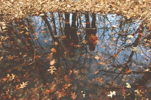 Autumn is (not) inspiring.