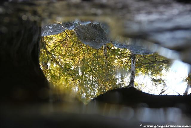 Reflets d'automne, Canche aux Merciers, Trois Pignons, (C) 2014 Greg Clouzeau