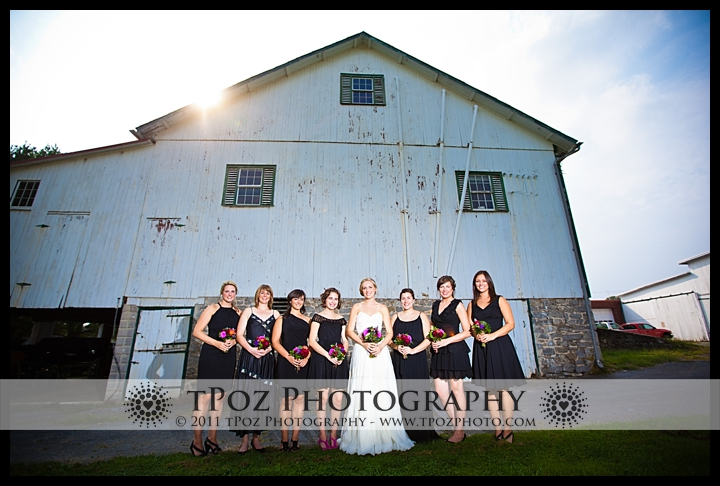 Landis Valley Museum Wedding
