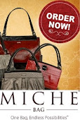 Terri's Miche Bags