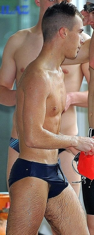 photo pitbull fake naked