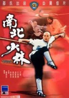 Phim Thiêu Lâm Nam Phái - VTV9 Lồng Tiếng