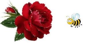 http://literaturomania.blogspot.com/2014/09/zabawne-kwiatki-z-wyszukiwarki-9.html