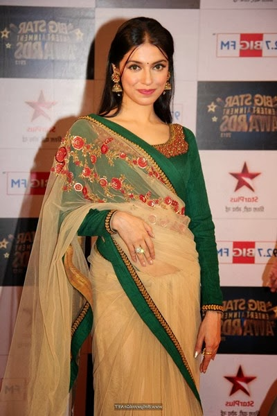 Bollywood celebrities at Big Star Entertainment Awards