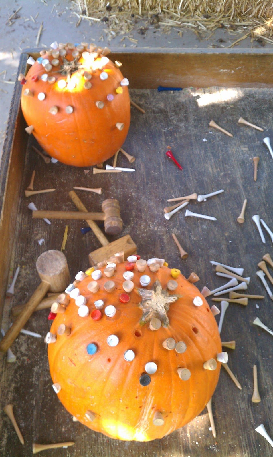 Uncategorized Pumpkin Golf exploring the outdoor classroom pumpkins and golf tees we set out two four small wooden mallets a ton of children really enjoyed this activity they were very succes