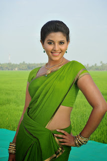 Anjali latest Glamorous pics in saree 023