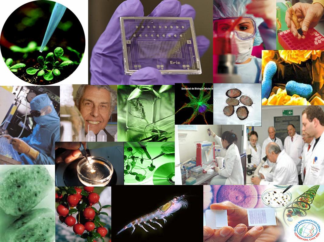 industria de la medicina: