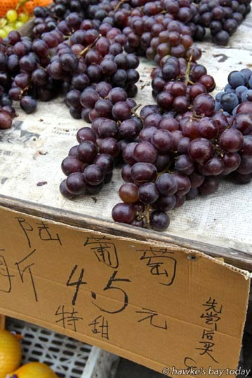 Huge grapes photograph