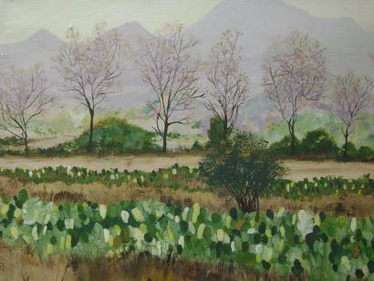 Un paisaje lagunero