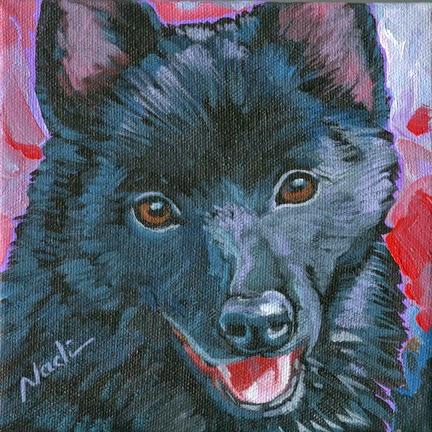 dog painting, Schipperke
