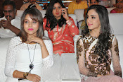 Tippu audio release function gallery-thumbnail-9