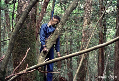 Aokigahara, Japan's Death Jungle