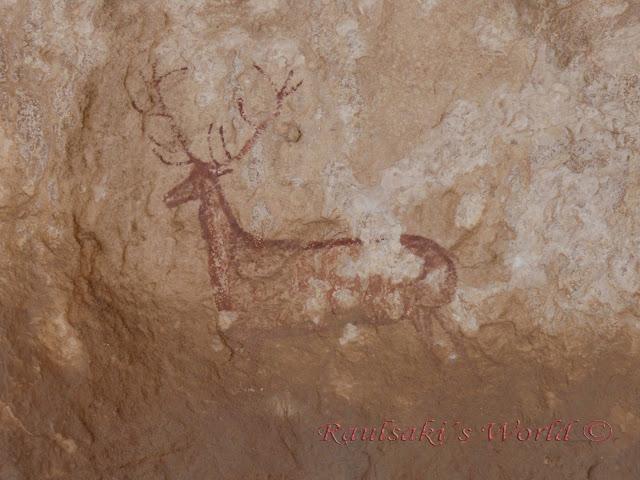ciervo de Chimiachas