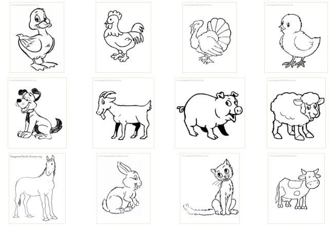 Primero a octubre 2015 - Animale domestico da colorare pagine gratis ...