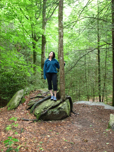 Beauty Begins with Biscotti: Dupont State Park
