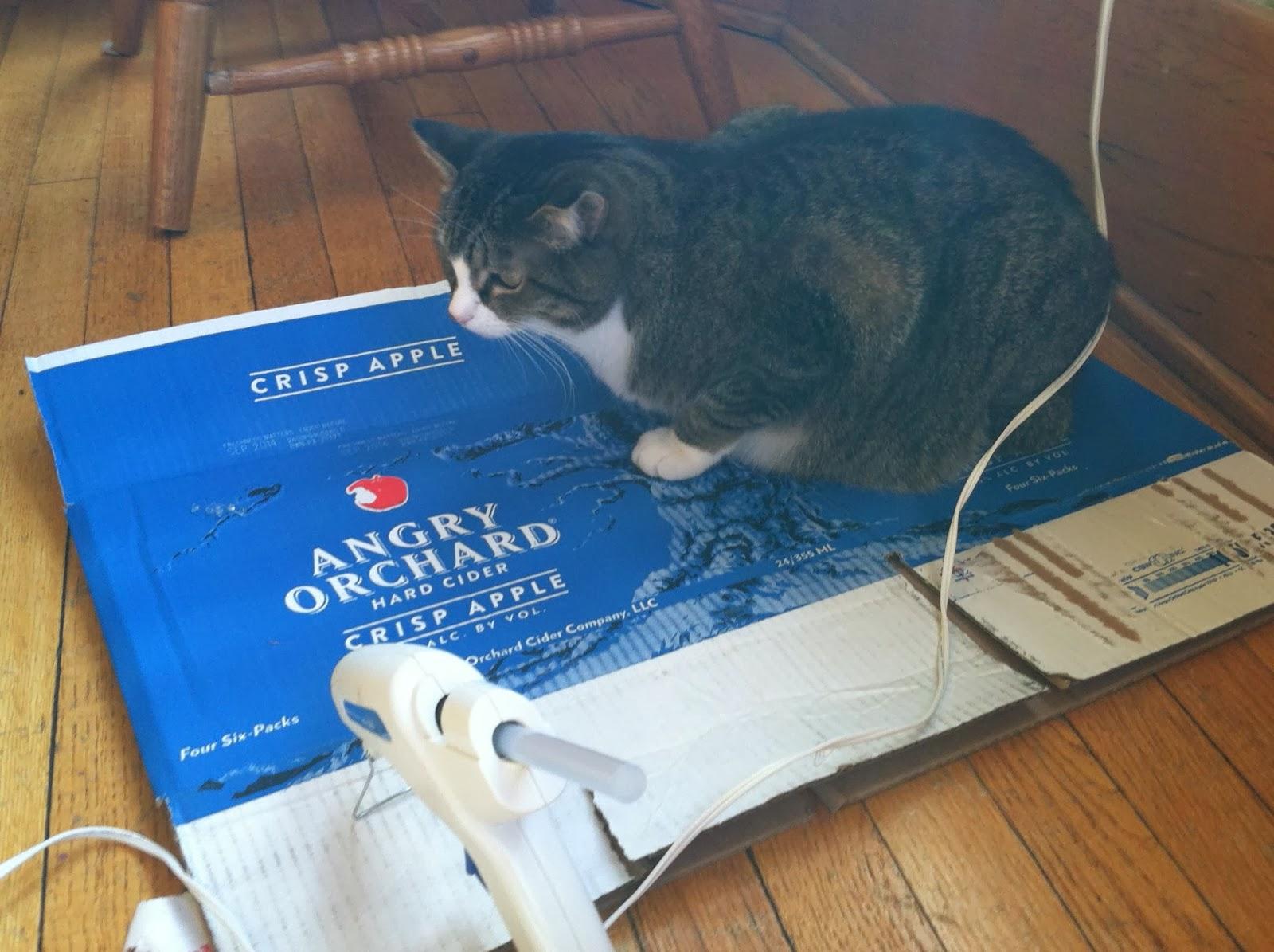 Cat and Hot Glue