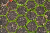Download hexagonal tile floor texture pack