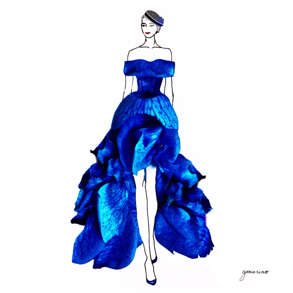 17-Midnight-Rose-Nature-and-Grace-Ciao-Design-and-Draw-Dresses-with-Petals-www-designstack-co