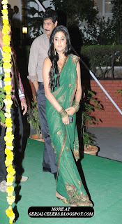 Priyamani in green low hip saree