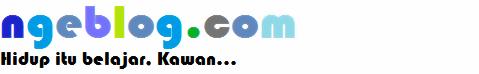 ngeblog.com