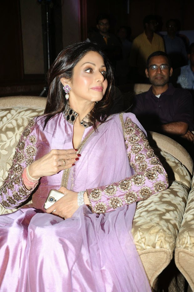 Sridevi Actress Latest Spicy Stills